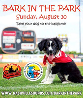 Bark in the Park 2014