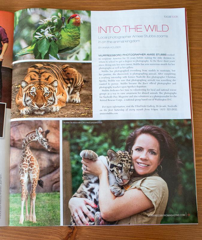 Nashville Zoo Animal Photographer Amiee Stubbs
