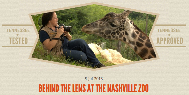 Nashville Zoo Photography Classes with Amiee Stubbs