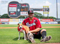 Nashville Sounds 2014